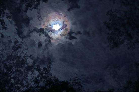 88263466-Ciel de Renoir... 1