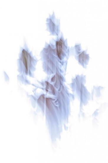 8A245475-La Dame blanche