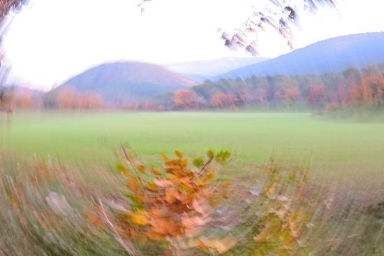 8B167145-Vent d'automne