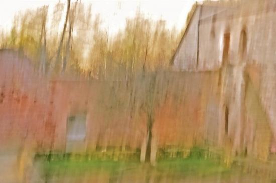 8B309793-L'automne du Sauvage !