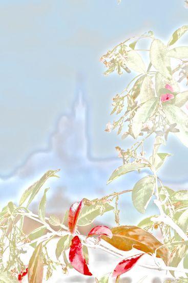 96059606-La Bonne Mère émue par le MuCEM !