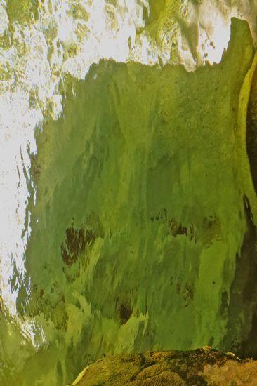 96225965-Le petit homme vert