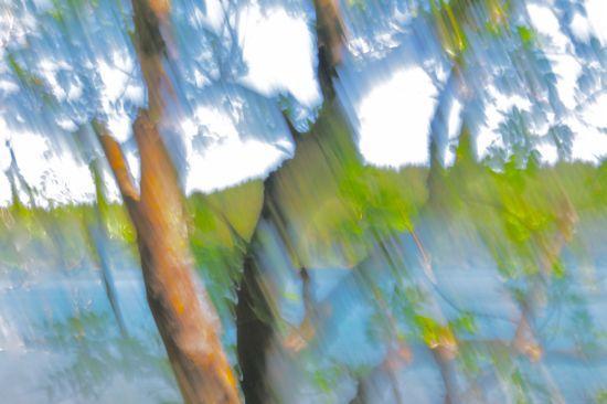 97055787Approche contemporaine du paysage 1