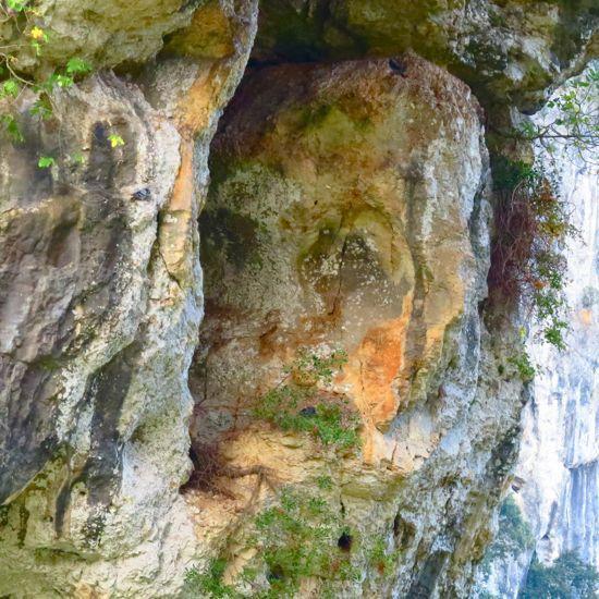 99260671-L'homme des cavernes