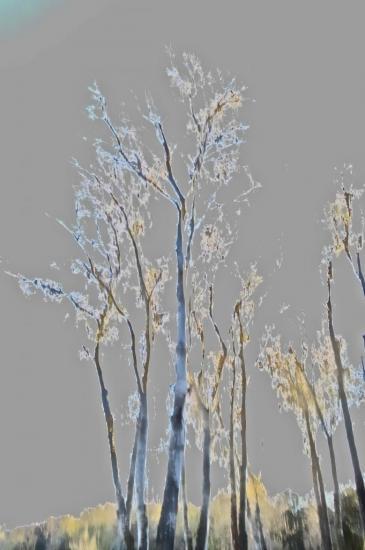 9C012128-D'or et d'azur