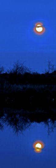 A1150115-Rêve de Lune