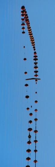 AB162224-Perles en suspension