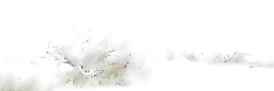 B1035309-Soupçon
