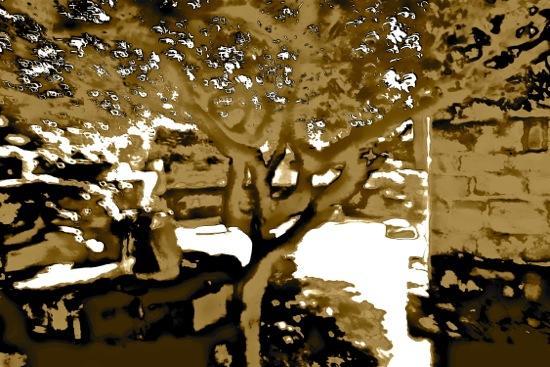 BA210584-Tombe la neige...