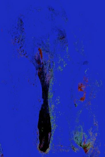 C1303405-Joan Miró :  Le Noir et le Bleu...