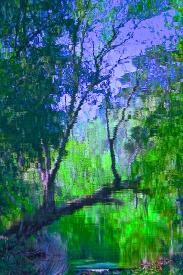 D4160944-Le pont de bois