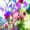 DA144553-Bouquet champêtre