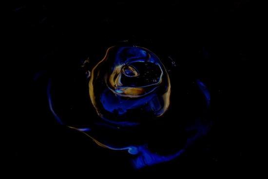 E3221174-Rose des Océans