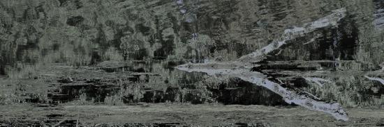 E9160127-Les baguettes du sourcier