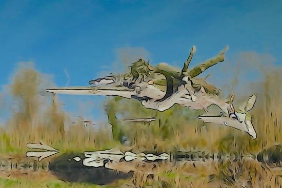 F2273655-Jet !