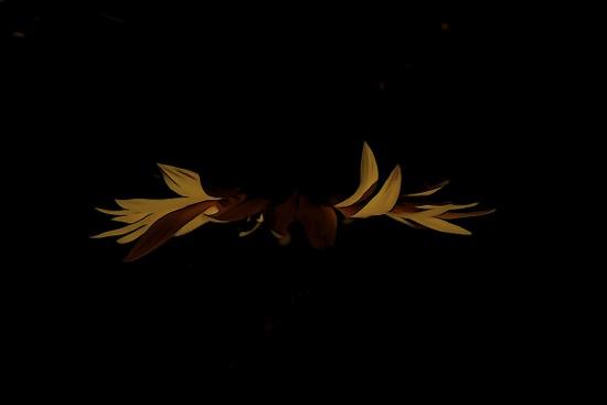 F7062799-2-Papillon