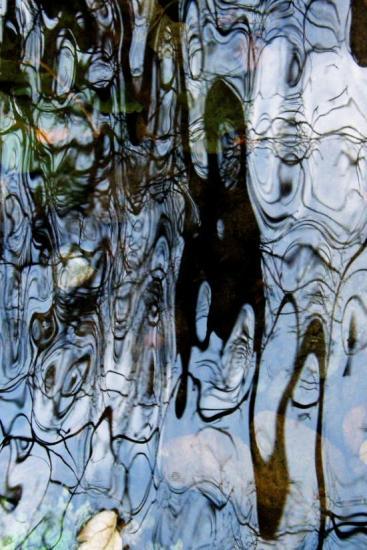 3B192006-De liane en liane...