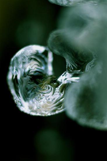 43071047-Bubble gum