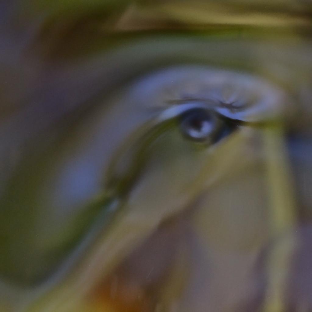 94249184-L'oeil d'Horus