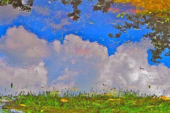 95256924-Reflets d'automne