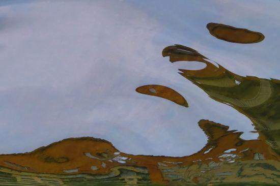 96287230-Le loup et la tortue