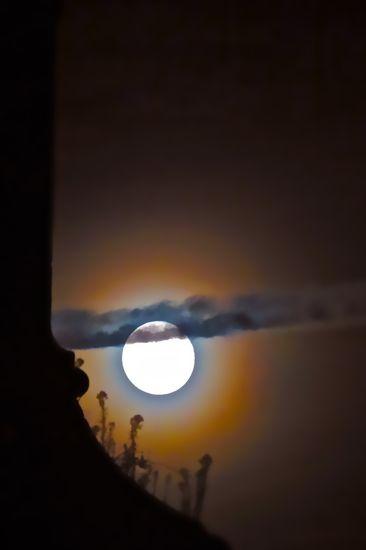 99200642-La lune rousse