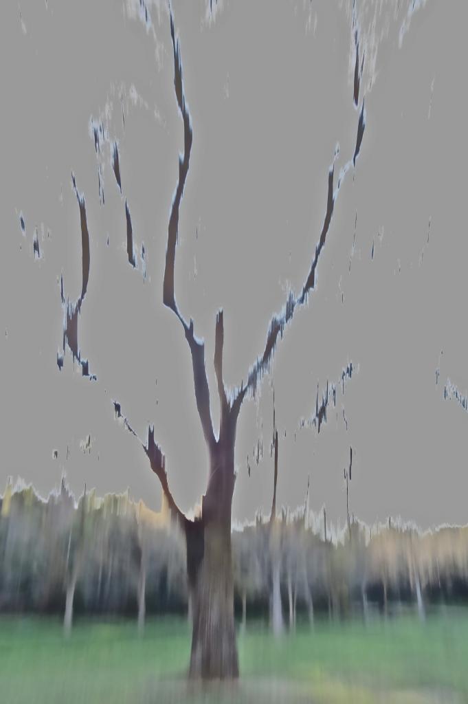 9C012041-Fantomatique
