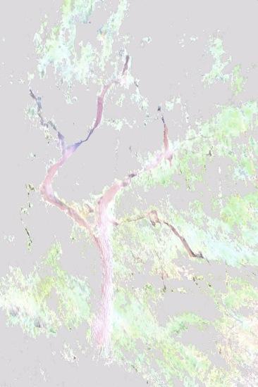 A6222424-Esquisse printanière