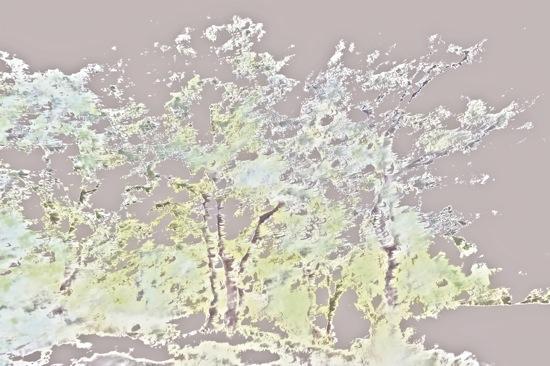 A7313062-Tourmente neigeuse