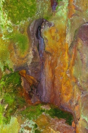 B5109246-Les couleurs de Renoir !
