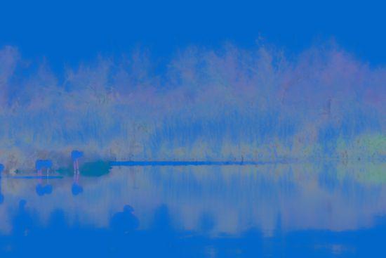 C1102028-La rivière infinie...