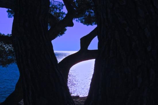 CC116220-Vitrail méditerranéen