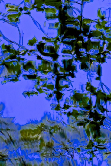 D6046977-Empreintes, en négatif...