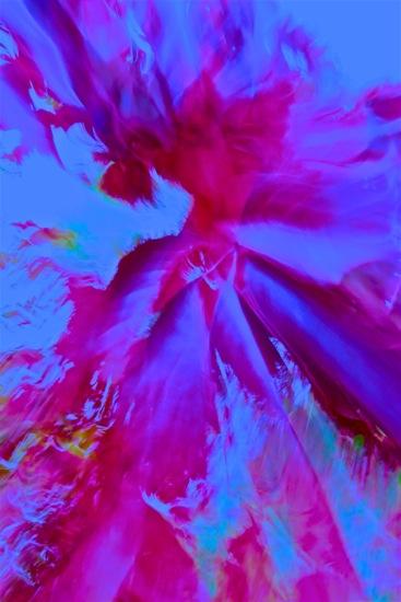 DA205873'-Le Big Bang
