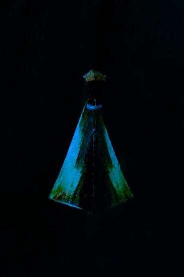 E9293005'-La Vierge noire