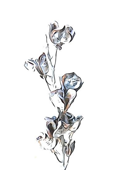 EC315630-Fleur d'hiver 3