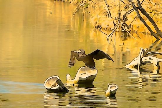 F3296336-Aquarelle à l'étang