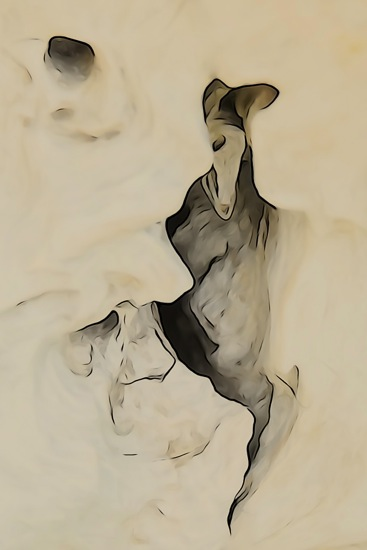 F5219706-Souris danse