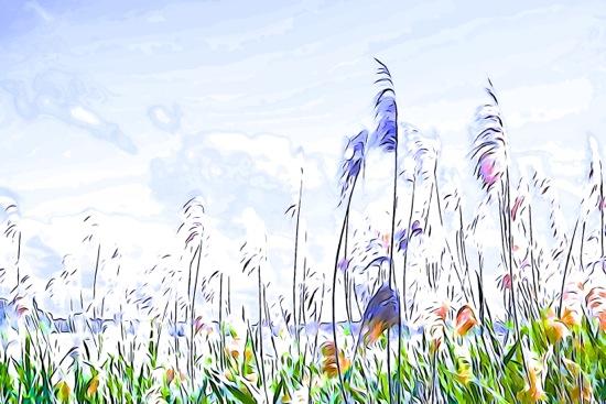 F6061722-Comme la plume au vent...
