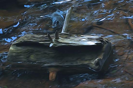 F8135916-Le vieux sac