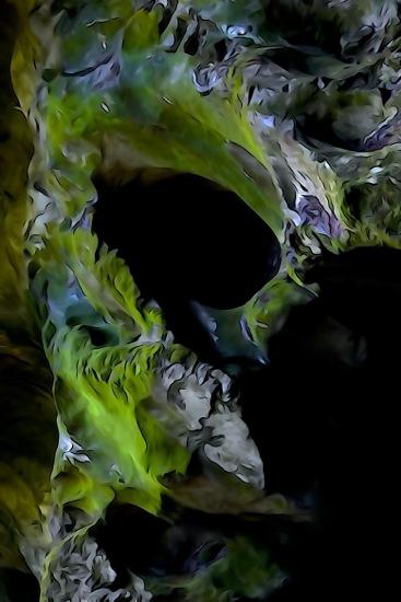 F8258597-L'oreille du Diable vert