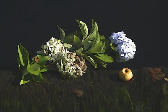 F9150692-Nature morte