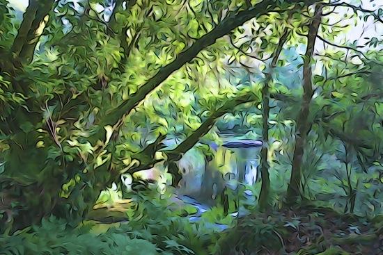 F9150716-La rivière des Druides...