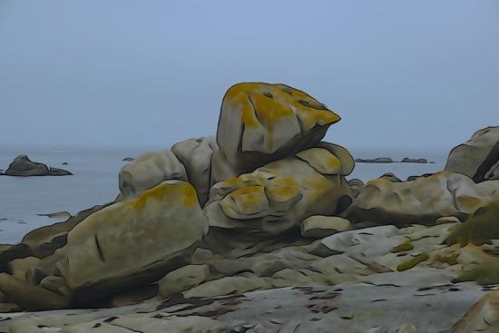 F9161081-L'oiseau sur le rocher