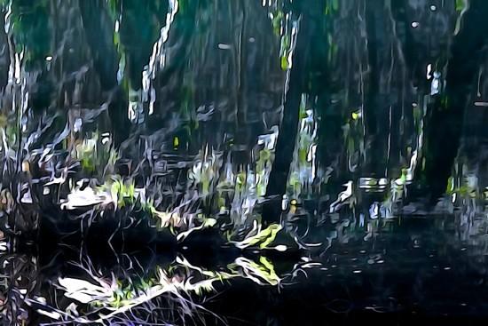 G2200467-Jungle