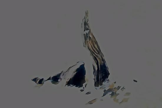 G8123012-Loch Ness