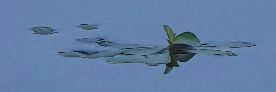 Ga011429-Aérien