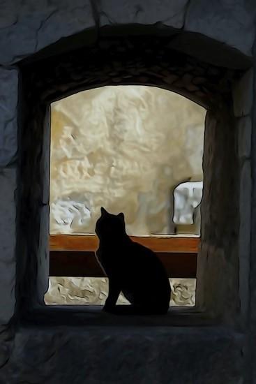 Ga082240-A sa fenêtre