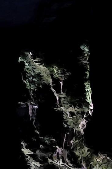 Ga082511-Cascade végétale