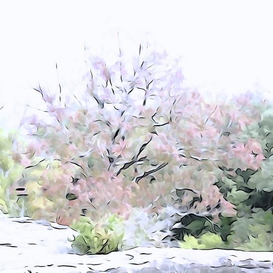 Ga163442-Printemps en automne